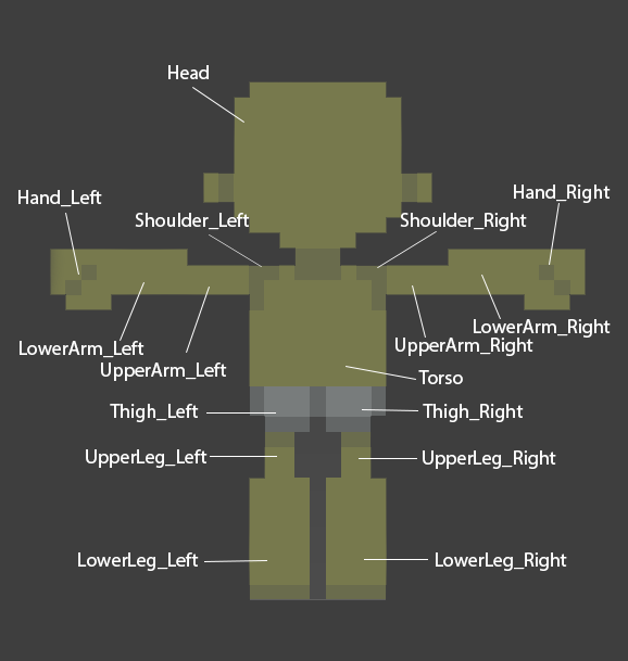 Player Model Layers.png